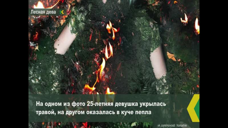 Блогер и художница Елена Шейдлина посвятила фотопроект горящей Сибири