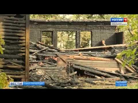 Пожарами в Новой Ладоге занялся Следственный комитет