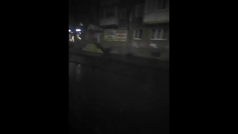 Алексей Мамонов - Live