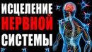 Исцеление Нервной Системы с Помощью Музыки Золотое Сечение для Лечение Нервов Медитация