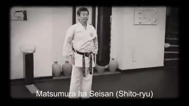 Matsumura ha Seisan Shito ryu