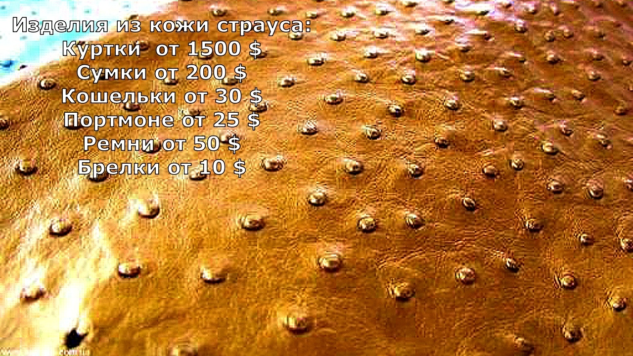 Цены на одежду и сувениры в Таиланде (фото). ZZ3V7HT2MYY