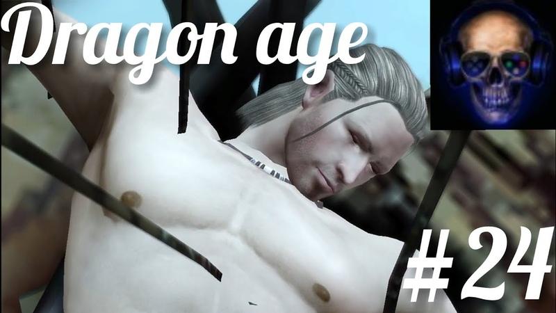Последние почести королю Dragon age 24
