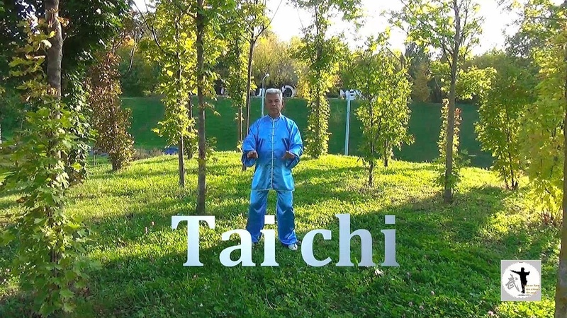 Tai chi. Школа Ушу - цзуй цюань/Казань