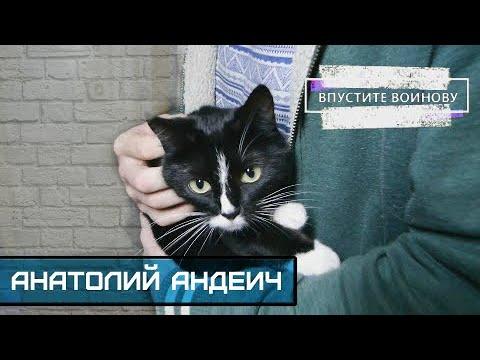 АНАТОЛИЙ АНДЕИЧ мат на мате кот вегетарианство 200₽ на жизнь