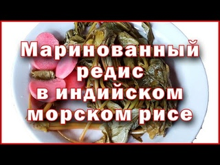 Маринованный редис в настое индийского морского риса - Pickled radish in Indian sea rice infusion