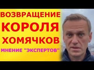 """Возвращение короля хомячков. Мнение псевдо-либеральных """"экспертов"""" о Навальном, и его возвращении."""