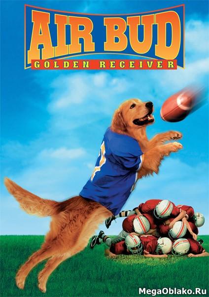 Король воздуха: Золотая лига / Air Bud: Golden Receiver (1998/WEB-DL/WEB-DLRip)