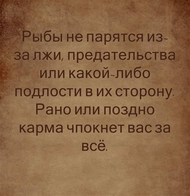 фото из альбома Елены Моисеевой №1