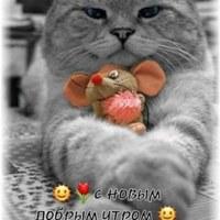 СашаЛаптев