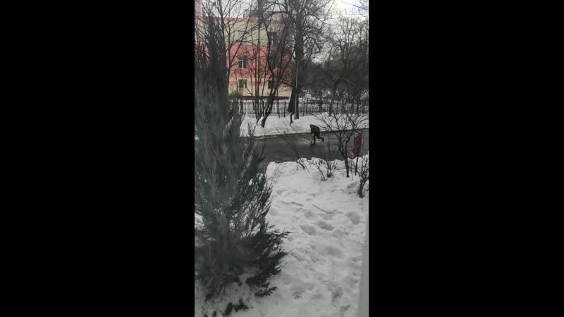 Ебанный Леонид хлебанул ред Булл и полетел на реактив тяге вокруг школы к Вере Ивановне