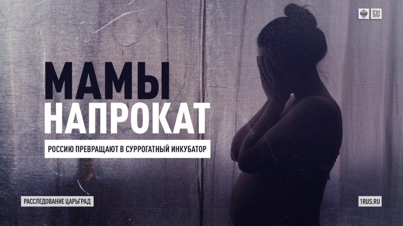Мамы напрокат Россию превращают в суррогатный инкубатор