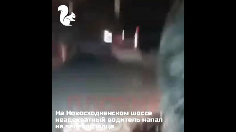 Видео от ZELENOGRAM ЗЕЛЕНОГРАД