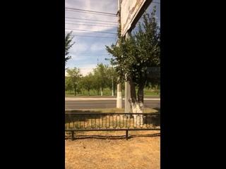 Yelena Voloşinatan video