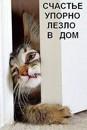Фотоальбом человека Татьяны Макушенко