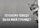 Фотоальбом Sveta Vasileva