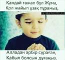 Персональный фотоальбом Куанышбека Аргынбаева