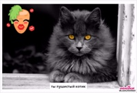 photo from album of Elіna Konvalyuk №16