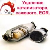 Удаление катализаторов, сажевый фильтров и EGR.