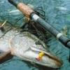 Рыбалка Днепропетровск