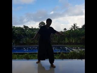 "Бали. Утро. Тайцзи-цигун ""18 форм"". Медитация в движении... #индонезия #бали #убуд #тайцзи #цигун #куренков #утро #медитация"