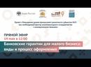 Прямой эфир «Банковские гарантии для малого бизнеса виды и процесс оформления»