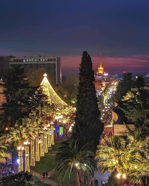 Сочинцы , подскажите, где лучше отметить новый год и где будет Елка и самое главное... [читать продолжение]