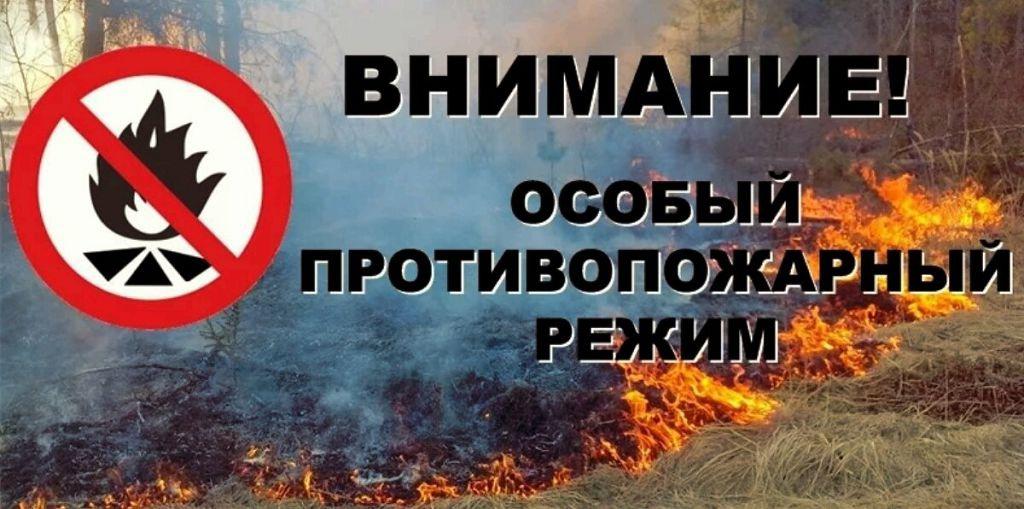 В Донецке действует особый противопожарный режим!