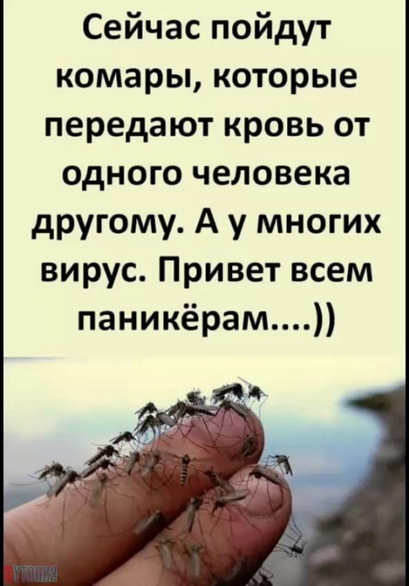 АНТИУТОПИЯ  УТОПИЯ 142722