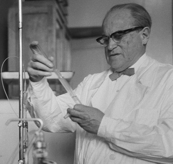 Как оказался в тюрьме гениальный вирусолог, который победил вспышку чумы: Академик Лев Зильбер