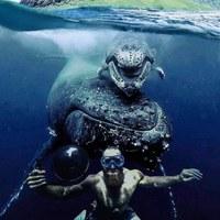 Подводный мир..
