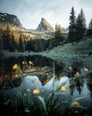 Отражения от немецкого фотографа Manuel Dietrich