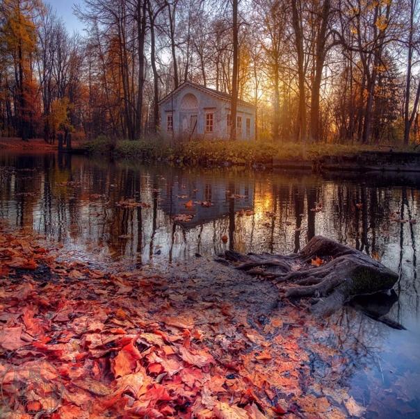 Александровский парк 🍂🍂🍂📷eduard_gordeev_...
