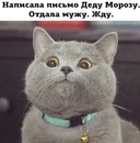 Можаева Валерия   Москва   0