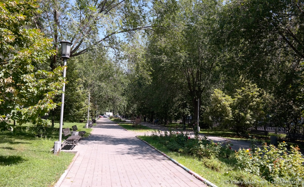 Бульвар на проспекте Ленина в Волгограде