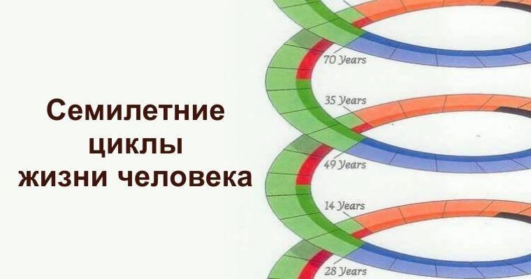 Семилетние циклы жизни человека