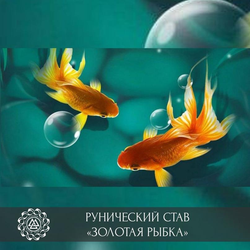 🔥 Рунический став «Золотая рыбка»