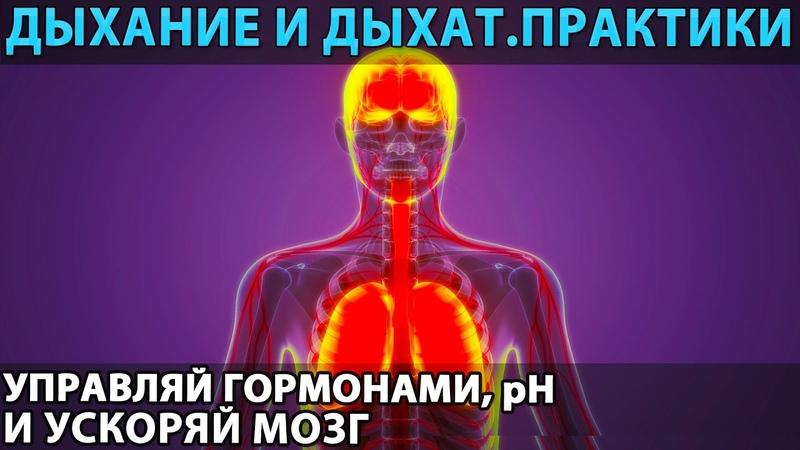 Дыхание и дыхательные практики эндогенный ноотроп и психостимулятор корректор pH и гормонов
