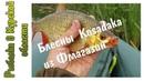 Обзор посылки с кошельком LureMax 822 и колебалками Kosadaka
