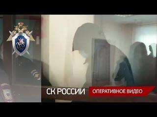 В Тверской области по факту убийства девочки и кражи местному жителю избрана мера пресечения