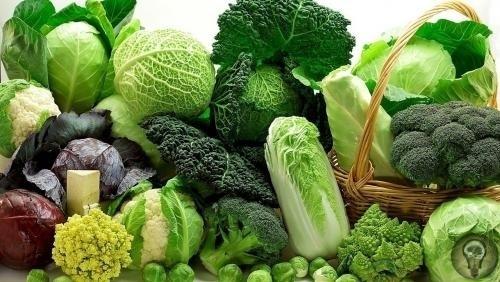 10 свойств капусты