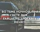 Личный фотоальбом Никиты Трофимова