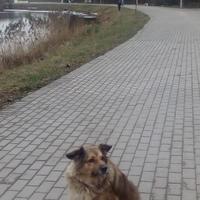 Светлана Клюкина