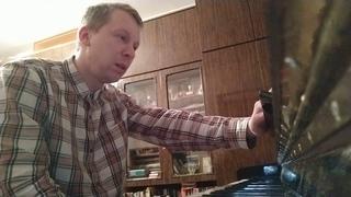 Алексей Талалаев пианист читает 2 статью об учении Иисуса Христа писателя Льва Толстого