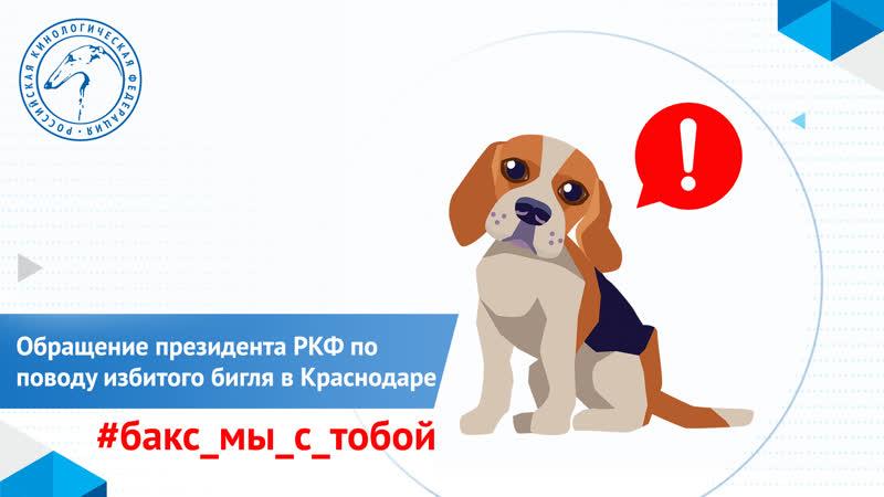 ❗️Обращение президента Российской кинологической федерации Владимира Голубева к Андрею Юрчику
