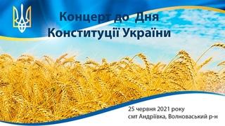 Концерт до Дня Конституції, смт Андріївка